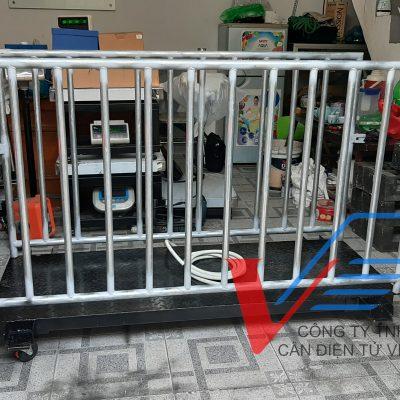 Cân heo điện tử DI-VPS-6 500kg